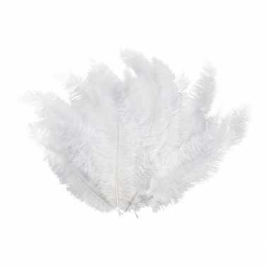 12 witte veren