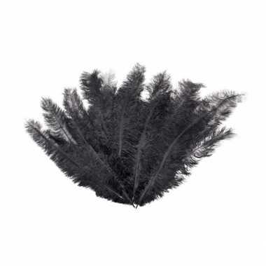 12 zwarte veren