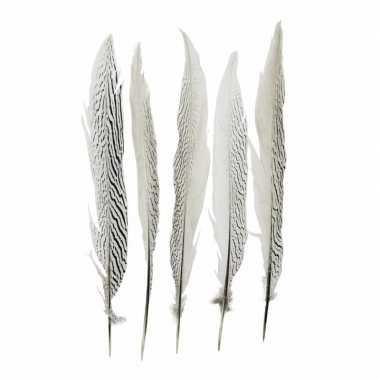 Zilverfazant veren 38 cm 5 stuks